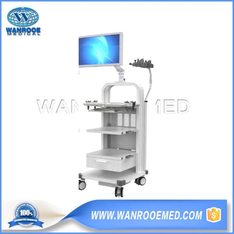 BWT-003C New Endoscopic System Cart Workstation Cart