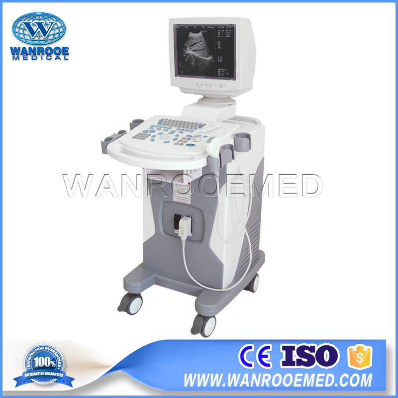 US3102A Notebook Ultrasound Machine Full-digital Trolley Ultrasound Scanner