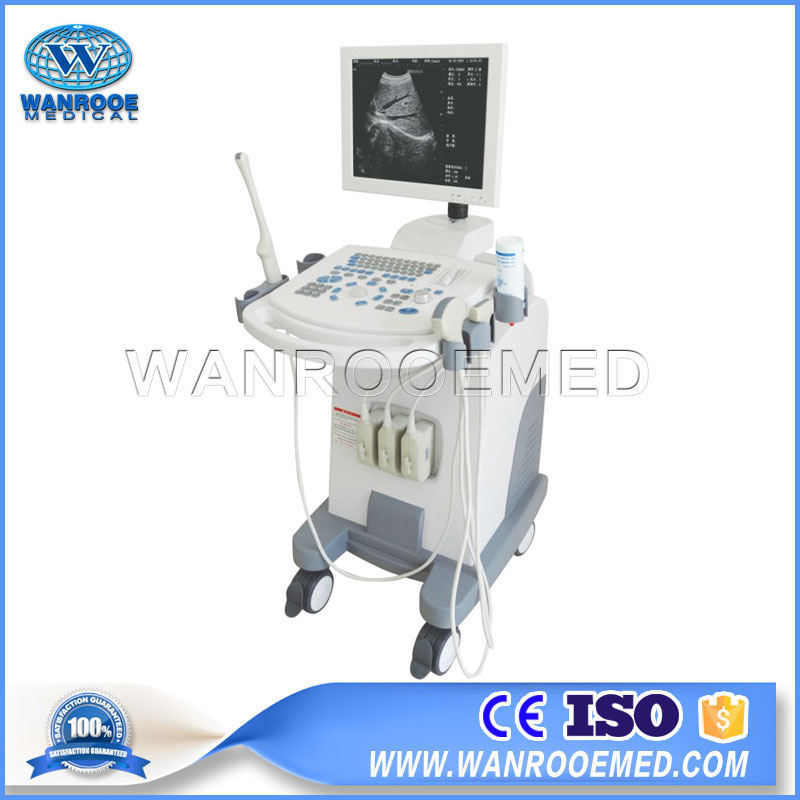 US880 Hospital Portable Full Digital Trolley Ultrasound Machine