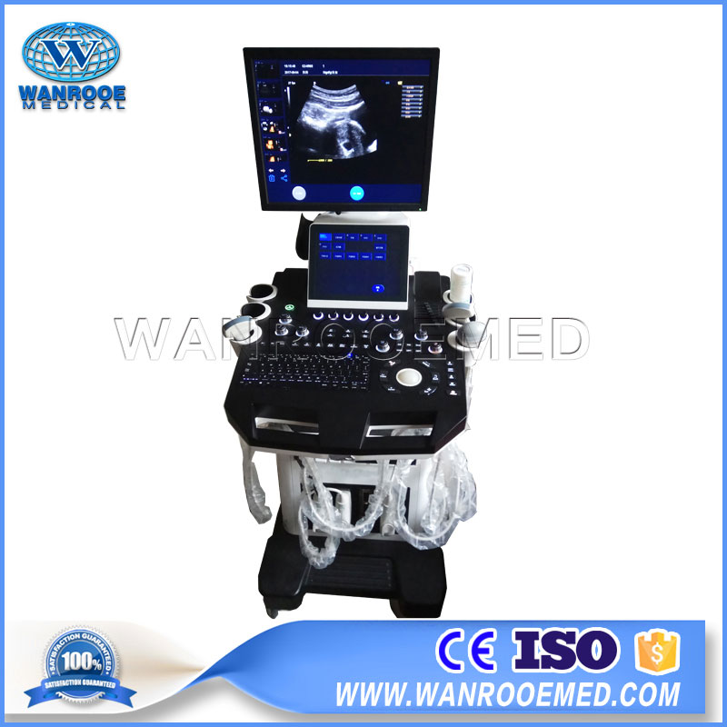 USC900 Medical Diagnostic 4D Color Doppler Trolley Ultrasound Machine