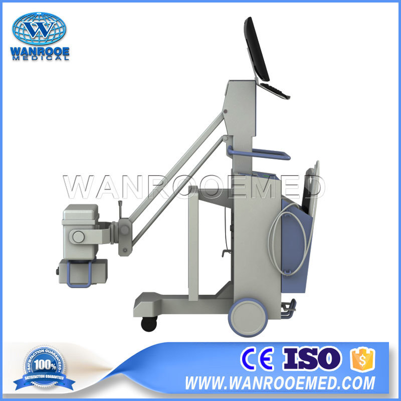 Vet1010 Medical Portable Digital Mobile DR System Animal X-ray Machine For Swine Sheep Cattle